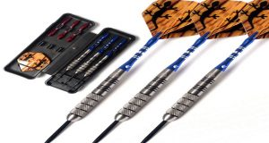 best darts for professionals on a budget